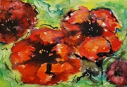Vign_Coquelicots_Poppies